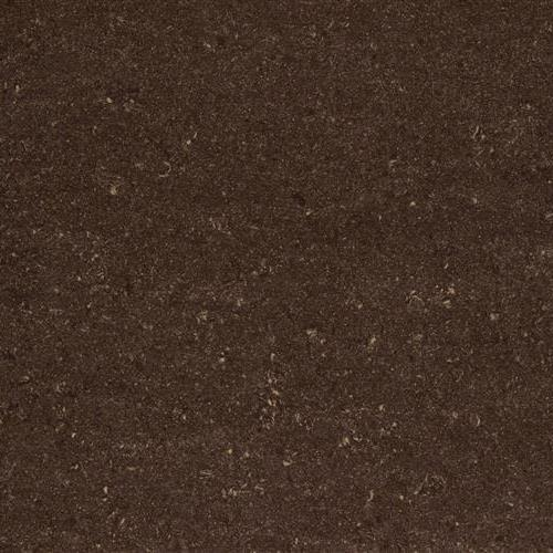 Swatch for Michigan Polished flooring product