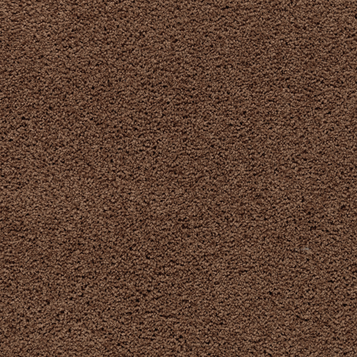 ProductVariant swatch large for Burnished Brown flooring product