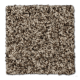 ProductVariant swatch small for Sandy Path flooring product