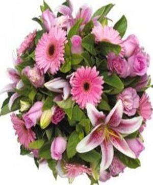 Blush Flower