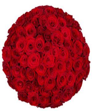75 Roses Arrangement