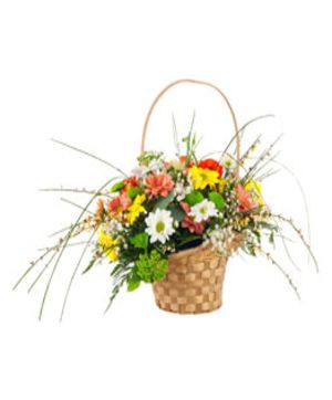 Multi Color Gerberas Basket