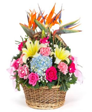 Floral Carnation Basket