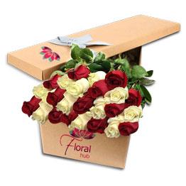 24 Red & White Roses