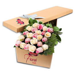 24 White & Pink Roses