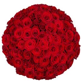 55 Roses Arrangement