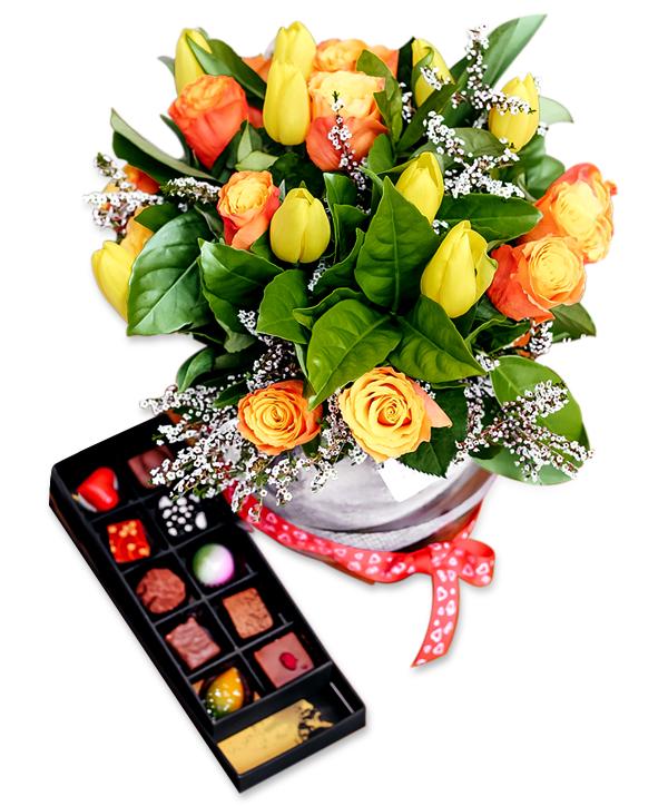 Congratulation Special