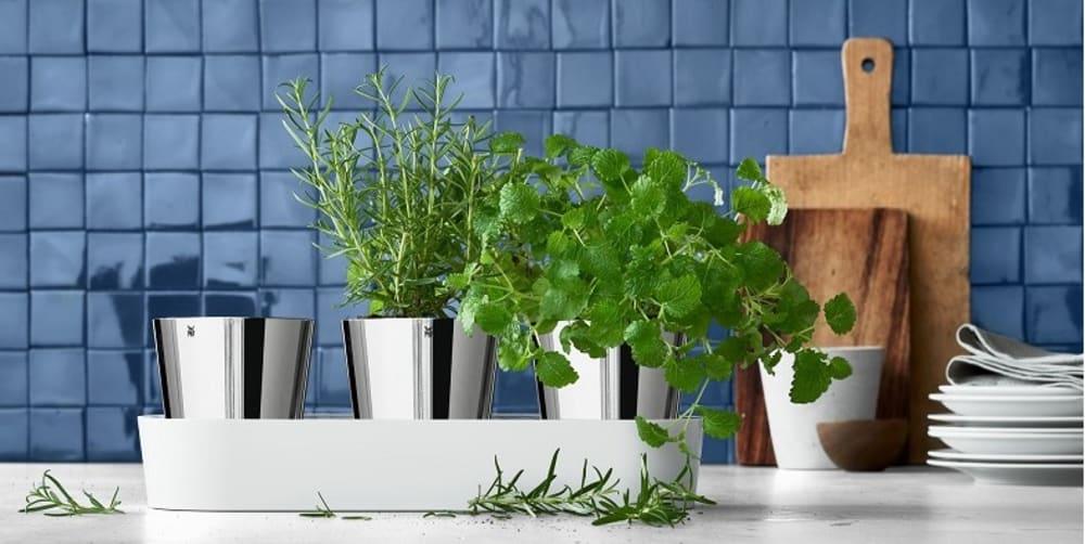 Zestaw 3 doniczek na zioła, Gourmet + nożyczki do ziół