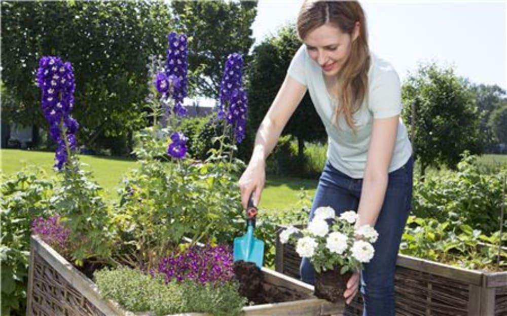 Zestaw narzędzi ogrodniczych do ogrodu Combisystem - Gardena