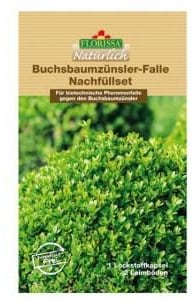 buchsbaumzuensler-falle-nachfuellset