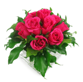 Bright Pink Rose Vase