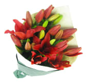 Red Lily bunch