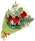 Roses and Gypsophila
