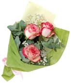 Paloma Roses and Gypsophlia