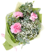 Carnations & Gypsophila