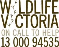 Wildlife Victoria  logo