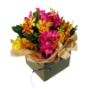 alternate arrangement view