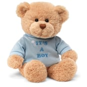 Its A Boy Bear