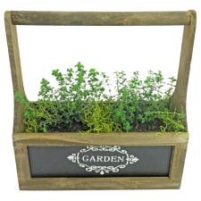 Thyme For Herbs - Standard