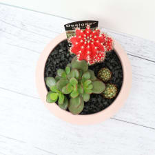 Green It Grows - Pink - Standard