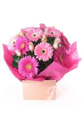 Gerbera and Rose Box