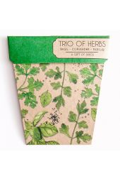 Trio of Herb Seeds
