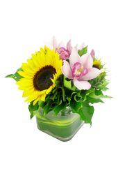 Sunflowers and Cymbidium vase