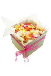 Mixed Rose Petals - Large