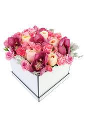 Rhapsody Of Roses