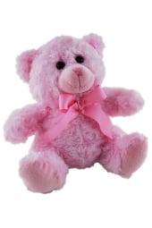 Baby Girl Teddy
