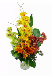 Mother's Day Mixed Orchid Vase