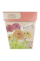 Hooray Zinnia Gift of Seeds