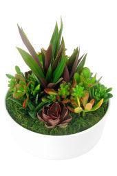 Superb Succulent Garden