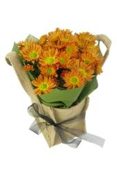 Orange Delicate Chrysanthemum