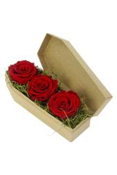 Red Neverending Roses