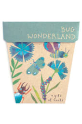 Seeds - Bug Wonderland