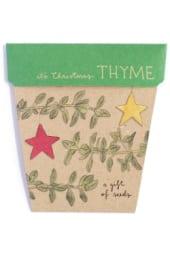 Seeds - Christmas Thyme