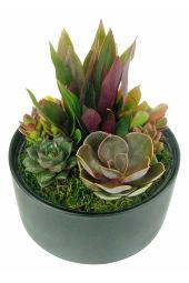 Modern Desert Succulent