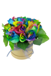 So Fancy - Rainbow Roses