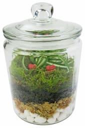It 'Moss' Be Love - Terrarium