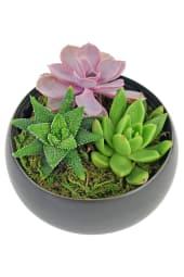 Green It Grows Garden