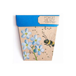 Seeds - Forget Me Not - Standard