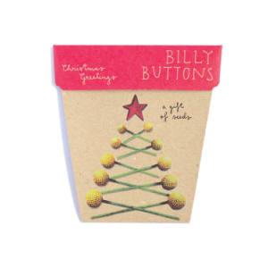 Seeds - Christmas Greetings - Standard