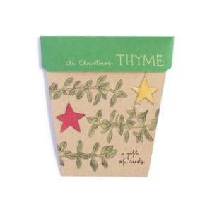 Seeds - Christmas Thyme - Standard