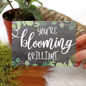 Your Blooming Brilliant - Standard