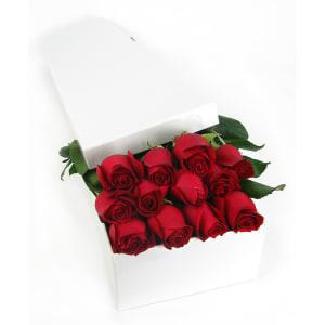 Valentine's 12 Elegant Roses