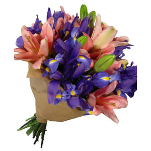 Lilies iris ahacgu
