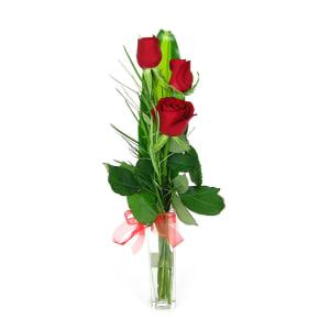 Valentine's 3 Roses in a vase