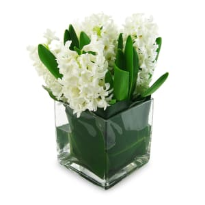 Hyacinth vase