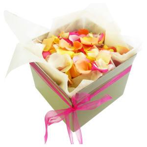 Mixed Rose Petals - Large